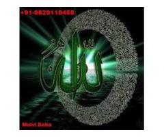 no.1 tantrik (( 09829118458)) intercast love marriage love back specialist molvi ji nagpur